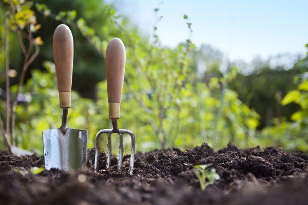 Двух недельный период испытаний устанавливается для сезонных работников