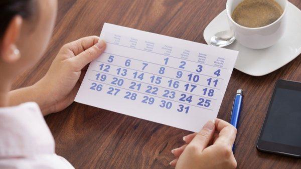 Отпускной период включает все установленные законом дни – основные и дополнительные