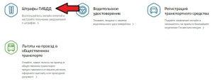 Выбор категории штрафов на портале Госуслуг